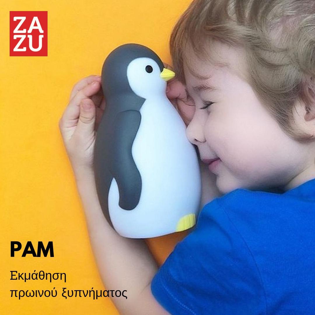 pam-asirmato-ixeio-xypnitiri-fos-nyktos-ekmathisis-pigouinos-zazu-fotistiko-polyxromo-grey-blue-light